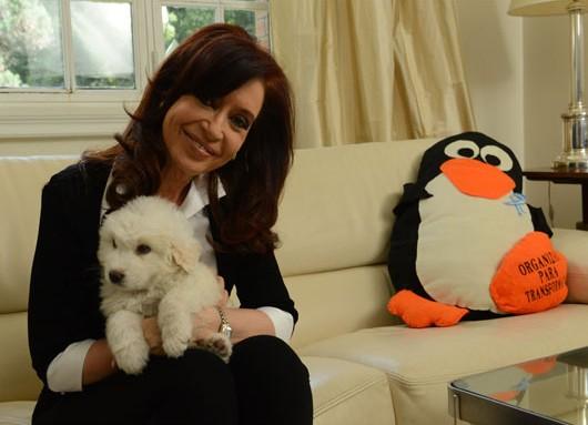Cristina-Kirchner-Vuelve-530x383